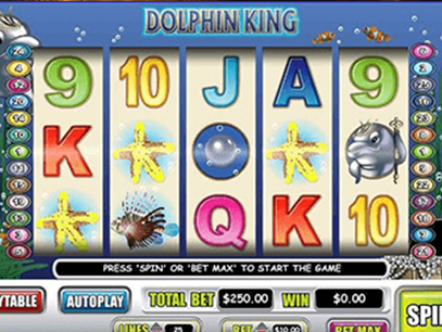 slot Dolphin King
