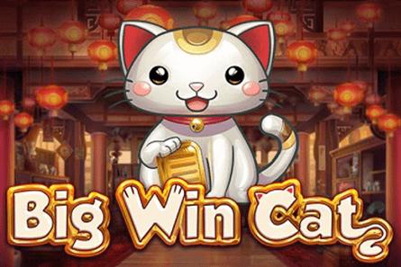 Big Win Cat tragamonedas