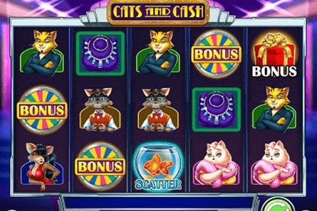 Cats and Cash tragamonedas